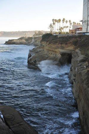La Jolla Shores Hotel: La Jolla Cove.  Make sure to visit here!