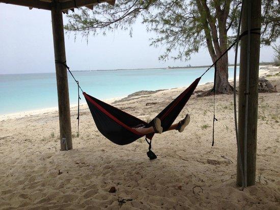 Landfall Park: Relaxing on the beach!