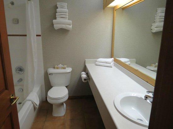 Hearthstone Lodge: Banheiro