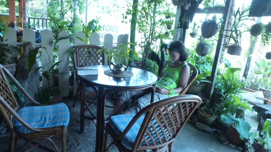 Kunda Vegan Vegetarian Cafe: The inglese, libro e oasi...