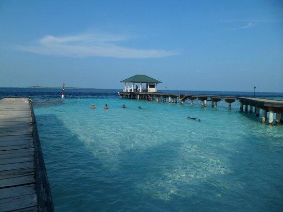 Embudu Village: Hotel Enterence view