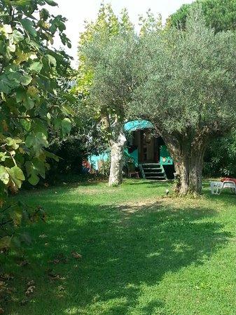 Amandari : The gypsy wagon hidden in the huge garden