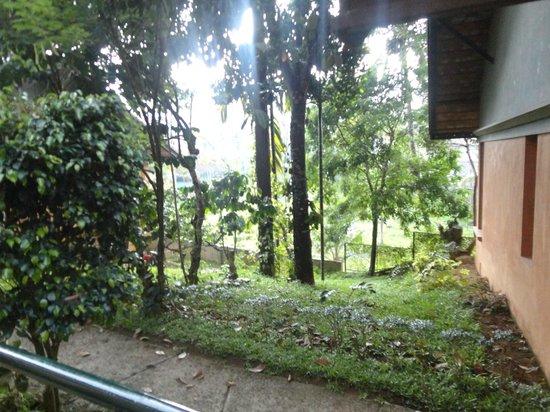 ABAD Green Forest Resort: surrounding