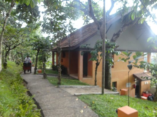 ABAD Green Forest Resort: walking from the room to swimming pool