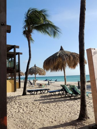 Tamarijn Aruba All Inclusive : beach