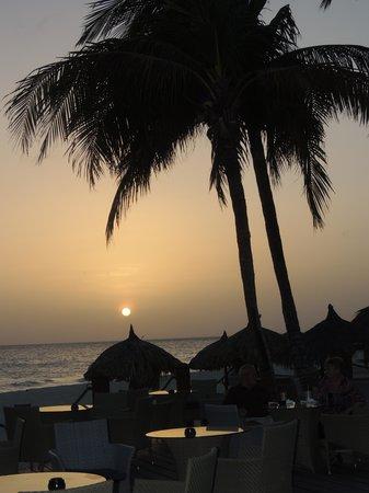 Tamarijn Aruba All Inclusive : Pelican Bar at Divi