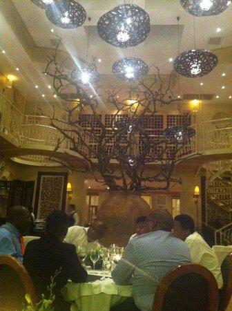 Qunu Restaurant: View of the tree in Qunu