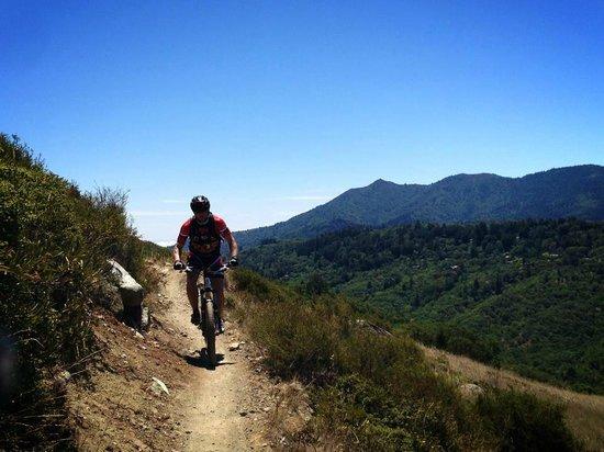 Stoked SF: Shredding the trails at Camp Tamarancho, Marin County CA