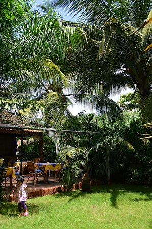 Bougainvillea Guest House Goa : Dining area and lawns