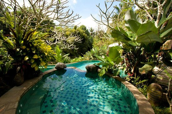 Villa Madu pool area