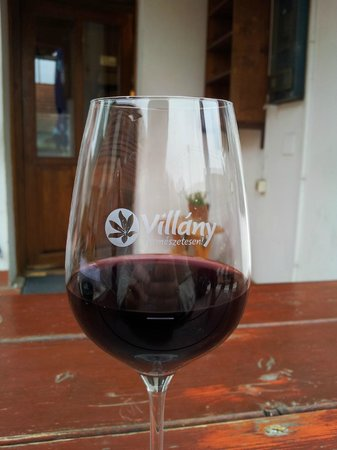 Villany, Ungarn: Great vine!