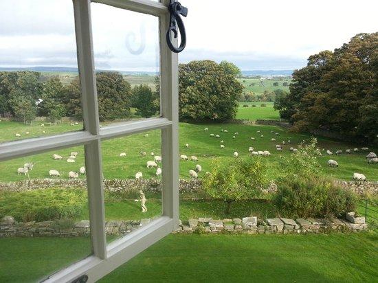 Braithwaite Hall: view from room