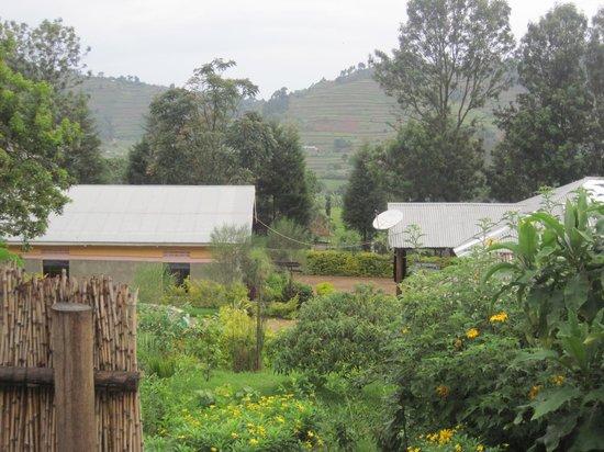 Nshongi Gorilla Resort : Gardens and views