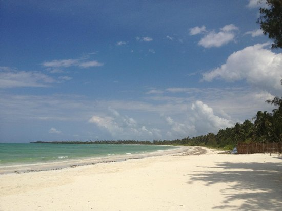 Santa Maria Coral Park : Playa de Pongwe