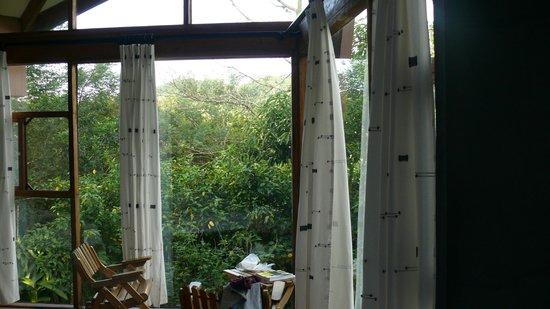 Tenorio Lodge : vue sur la nature