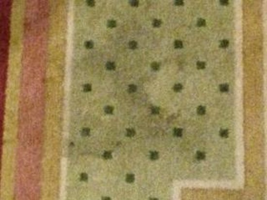 Steigenberger Wiltcher's: pasillo entrando al cuarto