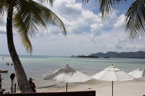 Novotel Samui Resort Chaweng Beach Kandaburi: The beach out the front of the hotel