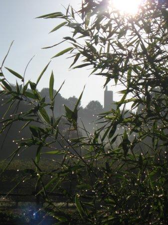 Agriturismo Il Piastrino : Vinci tower from Il Piastrino