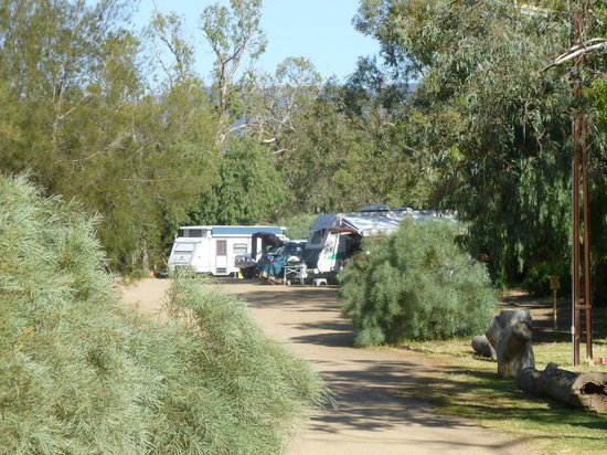 Quorn Caravan Park: Great powered camp sites