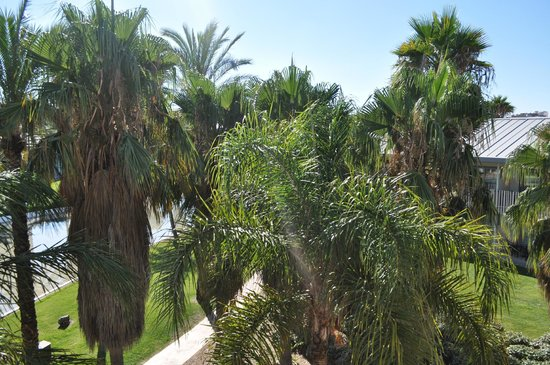 PortAventura Hotel Caribe : Вид из номера