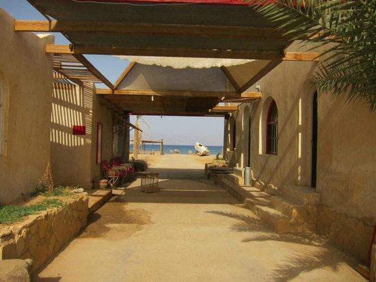 La Sirene Resort: centro de buceo Blueforce Diving Nuweiba