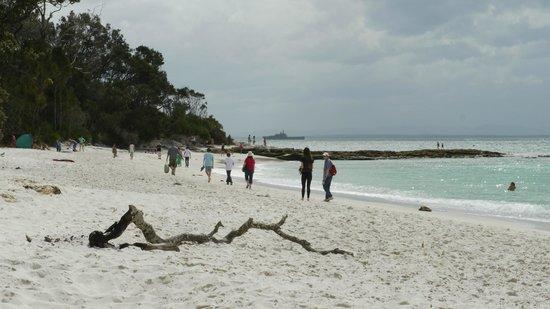 Jervis Bay National Park: Murray's Beach
