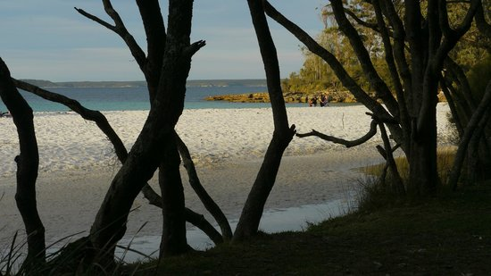 Jervis Bay National Park : Beach at Green Patch