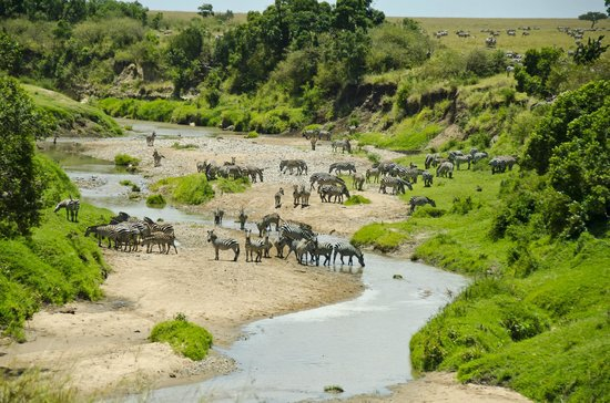 Nalepo Mara Camp: The view of the talek river