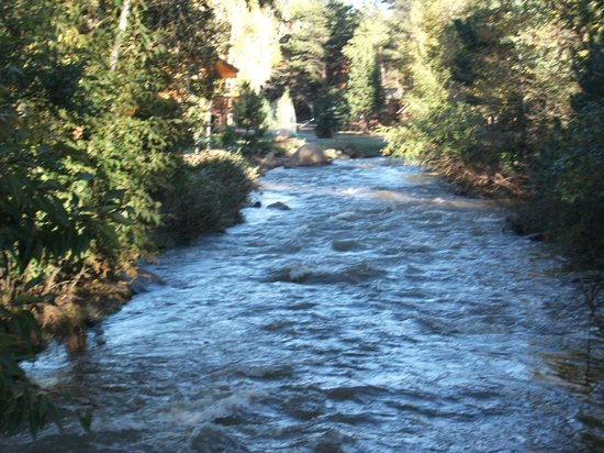Streamside on Fall River: Fall River - Runs directly behind cabins