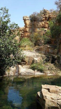 Mountain Sanctuary Park: West Pool