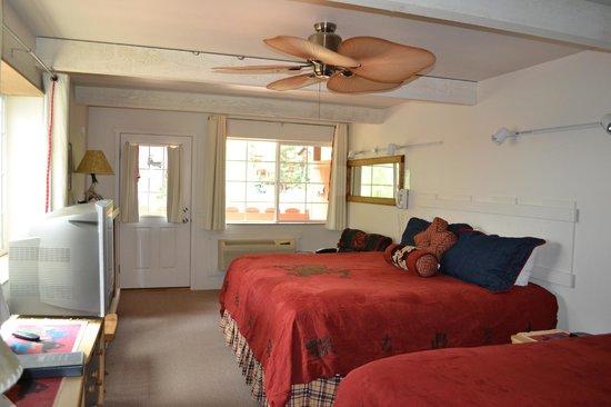 Hot Springs Inn: chambre