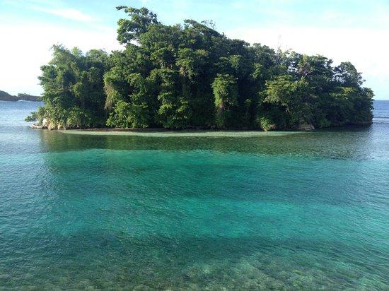 Moon San Villa: Monkey Island