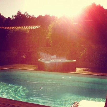 Les Jardins de Mathieu : Autour de la piscine ;-)