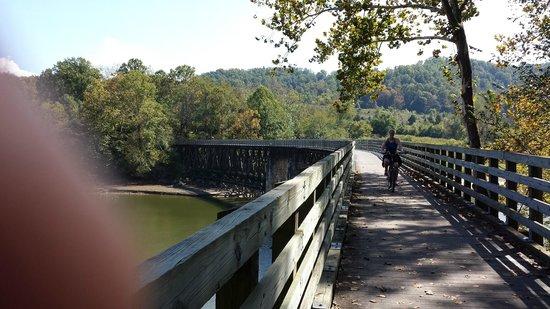A Bridge on the Virginia Creeper Trail