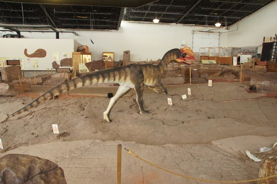 St. George Dinosaur Discovery Site at Johnson Farm: The Museum interior