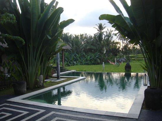 Hati Padi Cottages: piscine
