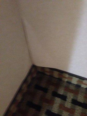 BEST WESTERN Winchester Hotel: wallpaper