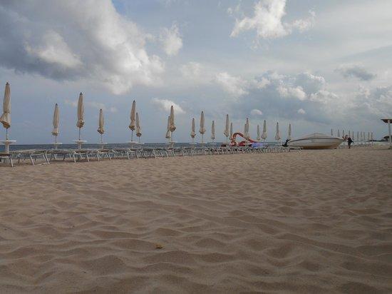Hotel Flamingo: La spiaggia dell'hotel