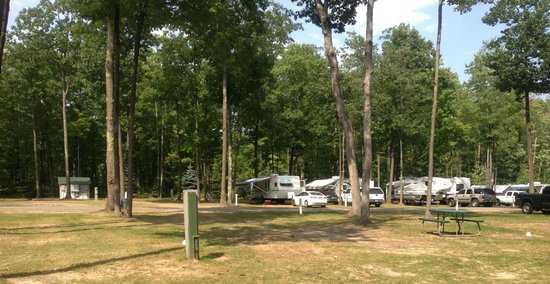 Indian River RV Resort & Campground: Indian River RV Resort