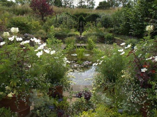 Harlow ~Carr Gardens - Picture of RHS Garden Harlow Carr, Harrogate ...