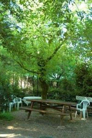 Camping Castel San Pietro: area relax nel verde