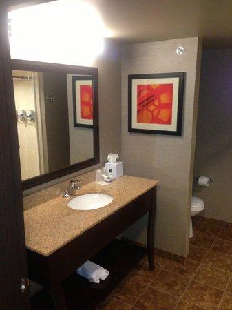 Astoria Hotel & Suites Minot: Bathroom