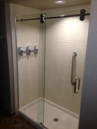 Comfort Inn: Shower