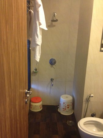 Hotel Sai Miracle : Wash Room