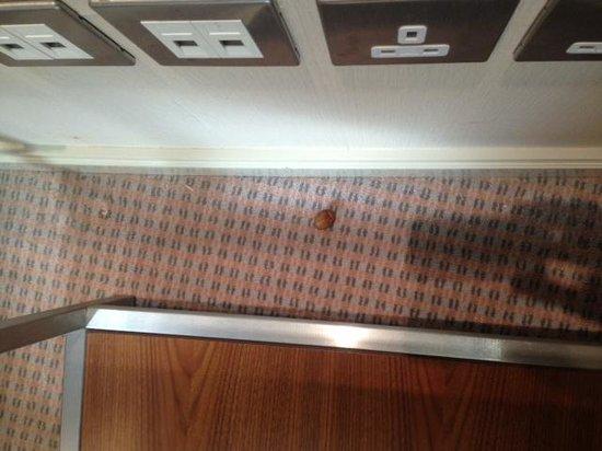 Movenpick Hotel Al Khobar : Stale date?