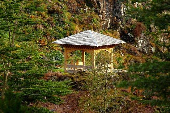 Benmore Botanic Garden : Pavilion - Bhutanese Glade