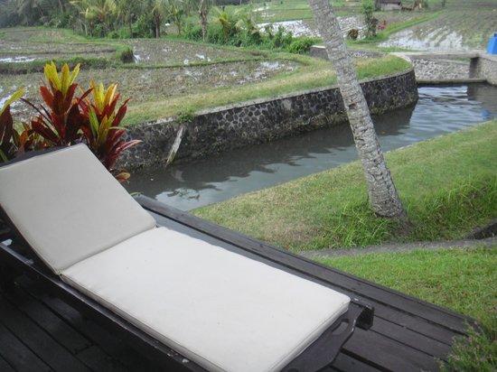 Villa Taman di Blayu : rizière à coté