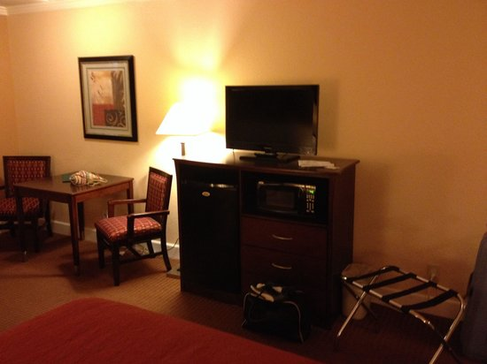Quality Inn San Simeon: Tv etc.