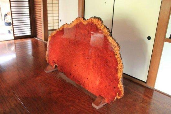 Zuihoin Garden : Reddish stone in the Zuiho-in temple