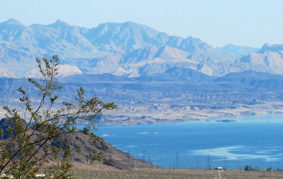 Coffee Cup: Lake Mead in Boulder City